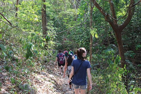 Students walking through jungle in Costa Rica