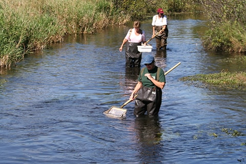 Students studying in stream