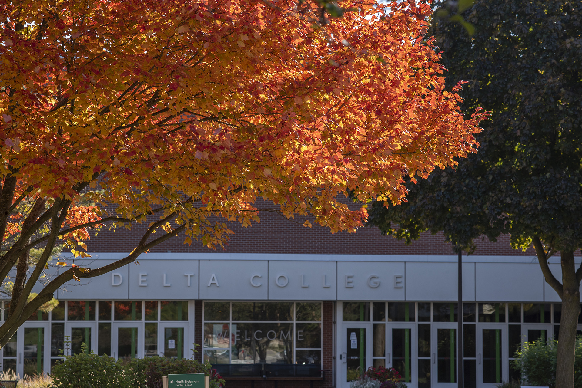 Campus looks beautiful during all seasons, especially fall.