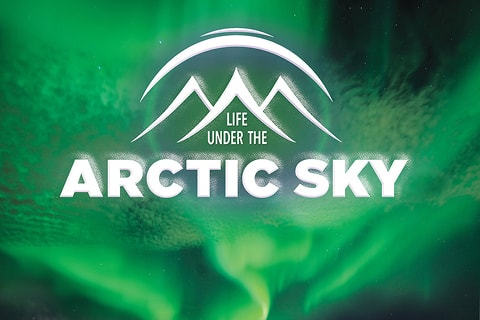 Life Under the Arctic Sky Poster